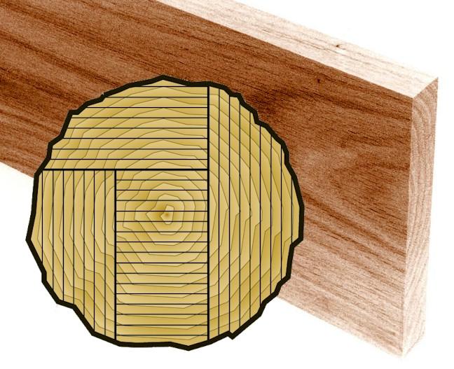 Understanding Wood Grain Www Imagessure Com