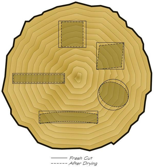Wood Movement